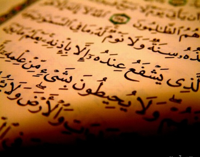 In this Show, Sheikh Moutassem Al-Hameedi comments on Surat Al-A`raf from verse no. 11 to verse no. 22, and the lessons we can draw from them.