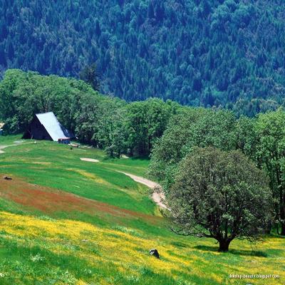 Al-Ma`arij (die Aufstiegswege)