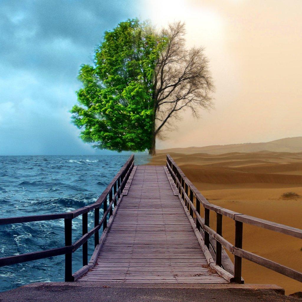 chapter 29 sura Al-Qiyamah from ayah 1 to sura Al-lnsan 18