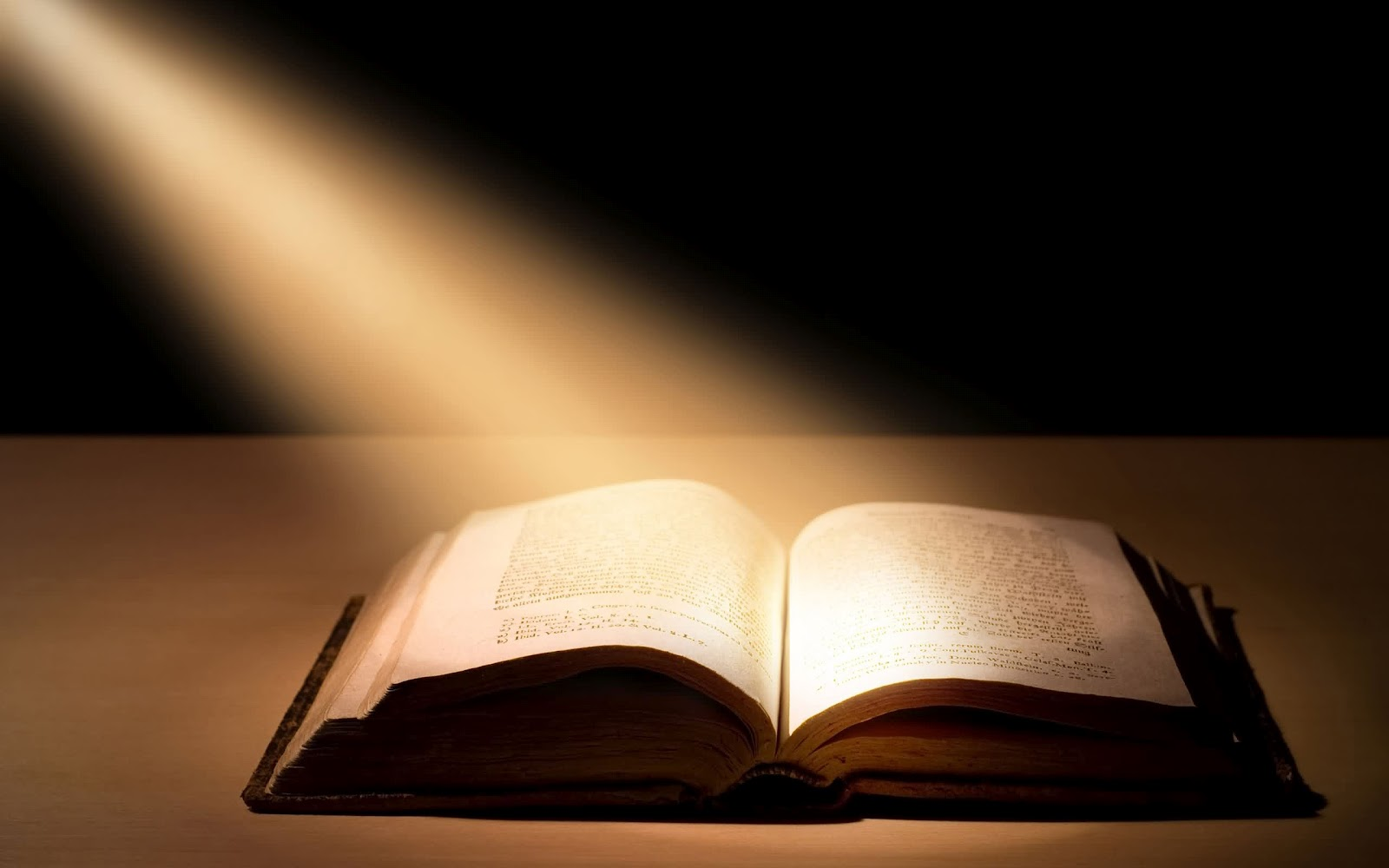 In the Light of the Qur'an (5)